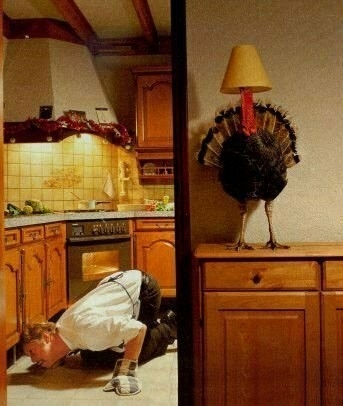 23173-thanksgivi.jpg